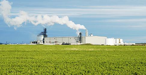 Biodiesel & Ethanol