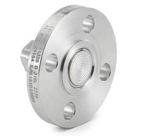 DF-EN Flush Flanged Diaphragm Seal